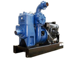Manufacturer of Chemical, Starch, Sugar, Machinery, Centrifugal Pumps